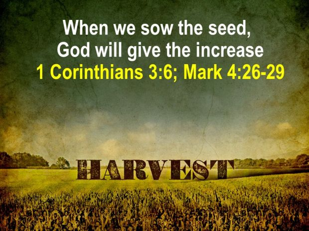 God gives the increase
