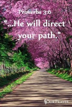 He will direct your path